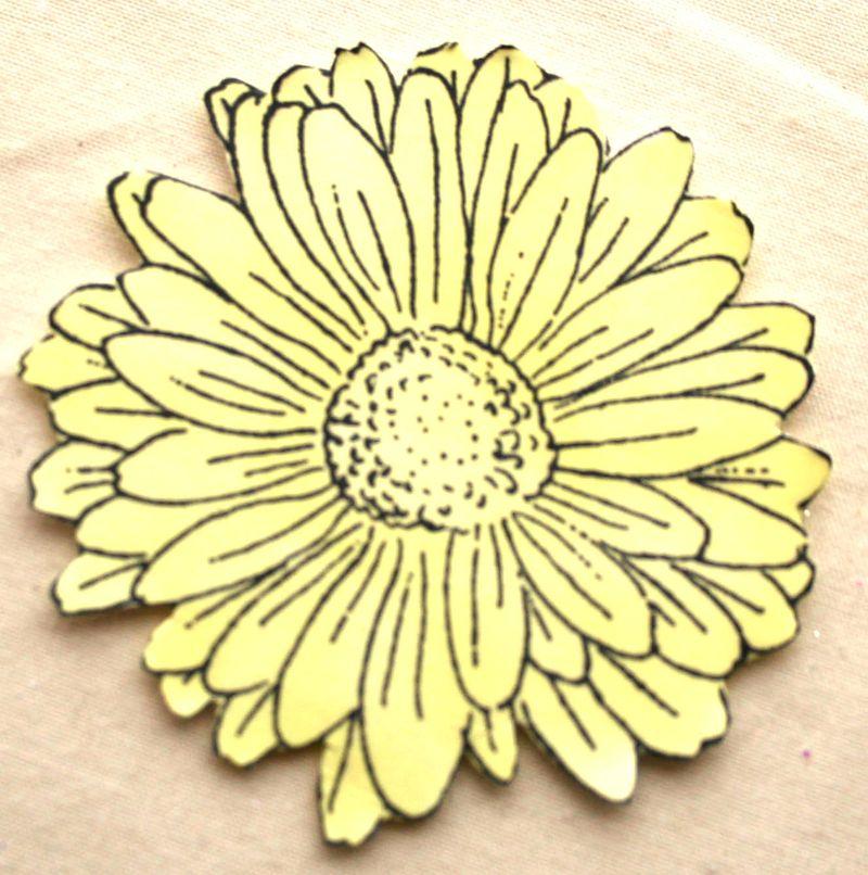 Yellow Daisy 1