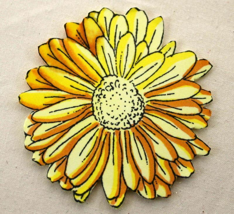 Yellow Daisy 3