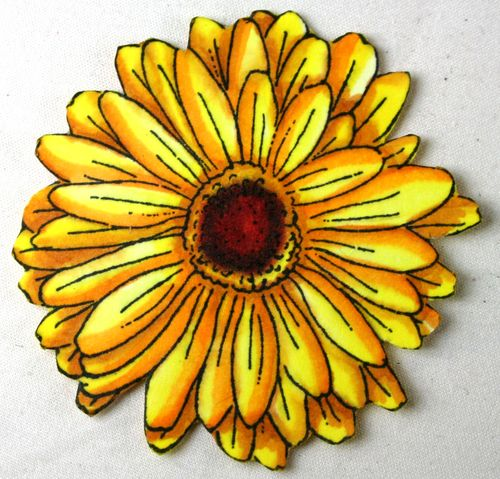 Yellow Daisy 6