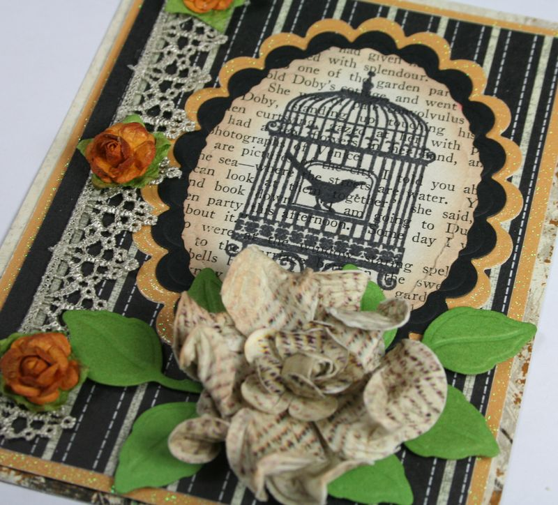 Close up of Birdcage on old book text
